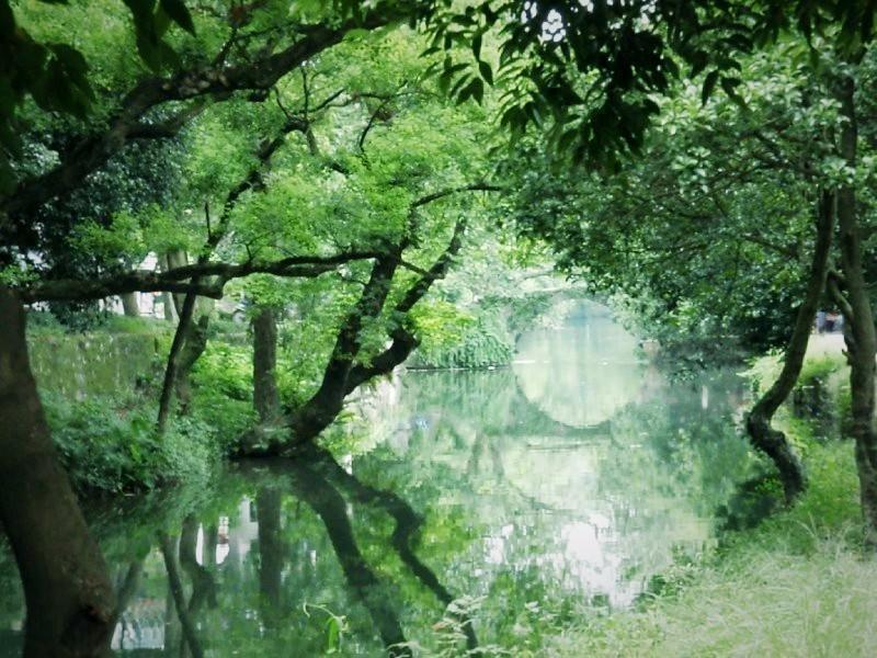 【游记之兴安】南有灵渠